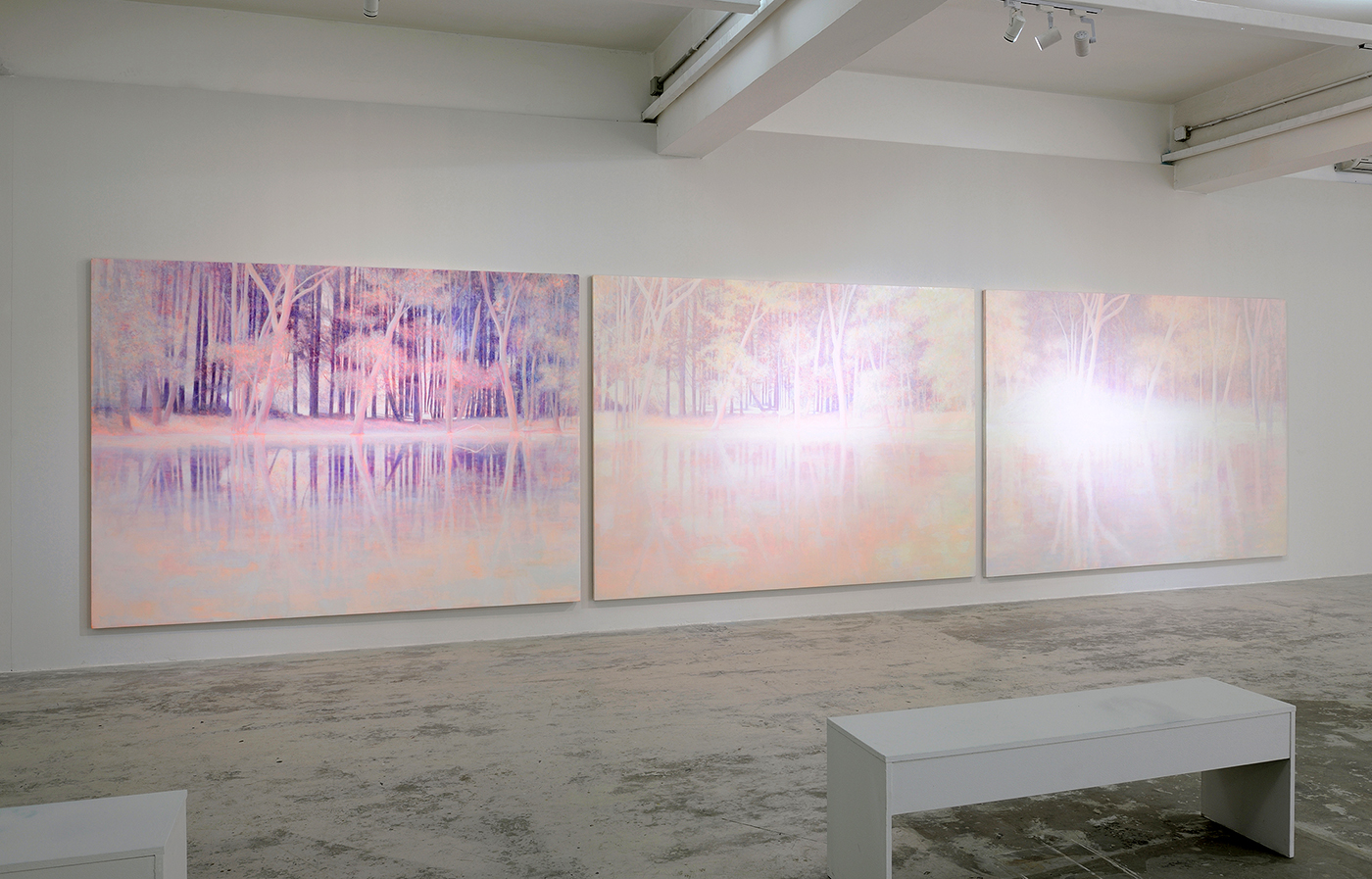 Daniele Genadry - Purple Glade, White Clearing, Pink Gleam, 2018