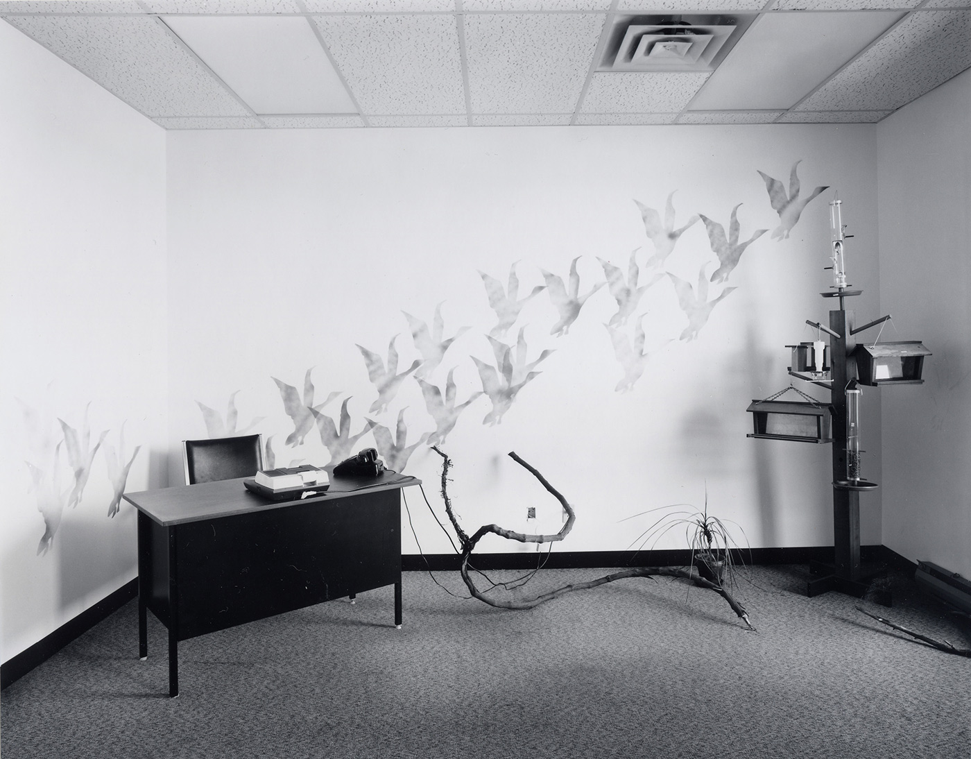 Lynne Cohen - Office and showroom, 1996